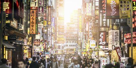 Tokyo, hovedstaden i Japan, er et spændende rejsemål med meget at opleve.