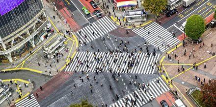 Krydset ved Shinjuku metrostationen er kendt som den mest trafikerede i hele verden.
