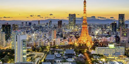 Tokyo-området er verdens mest tætbefolkede storby.