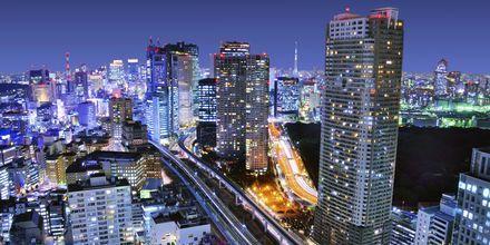 I Tokyo blander skyskraberne sig med hundrede årige japanske traditioner.