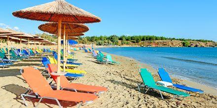 Stranden ved hotel Triton på Kreta, Grækenland.