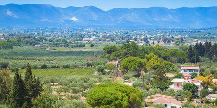 Frodigt landskab på Zakynthos, Grækenland.