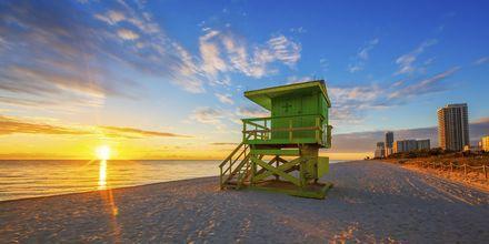 Solopgang på stranden i Miami i Florida, USA.