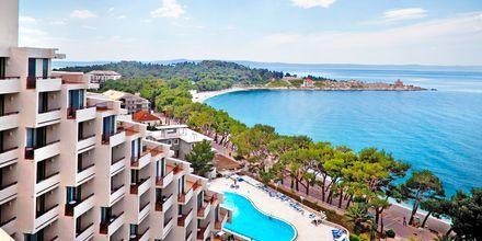 Hotel Valamar Meteor på Makarska Riviera, Kroatien.