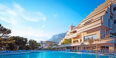 Poolområdet på hotel Meteor på Makarska Riviera, Kroatien.