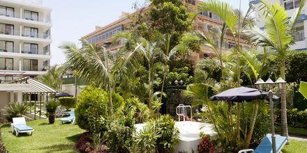Jacuzzi på Hotel Valle Mar på Tenerife, De Kanariske Øer, Spanien.