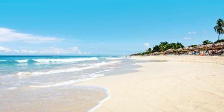 Strand, Varadero på Cuba.