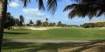 Varaderos golfbane på Cuba.