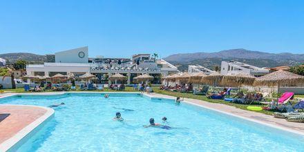 Pool på Hotel Varvara's Diamond på Kreta, Grækenland.