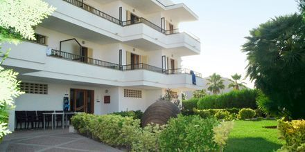 Hotel Venecia Apartamentos på Mallorca, Spanien.