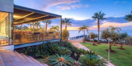 Udsigt fra VIDAMAR Resorts Madeira på Madeira, Portugal.