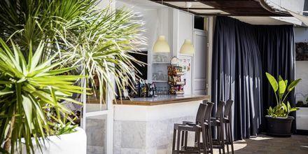 Bar på Hotel Vigilia Park i Los Gigantes på Tenerife, De Kanariske Øer.