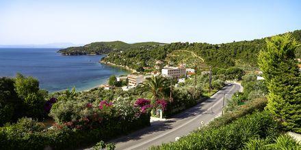 Udsigt fra Villa Anastasia, Skiathos.