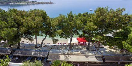Udsigt over stranden fra Villa Ankora i Makarska Riviera.