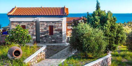 Hotel Villa Eleonas i Votsalakia på Samos