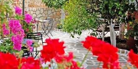 Villa Marie i Sivota, Grækenland