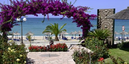 Stranden ved hotel Haris i Vrachos, Grækenland.