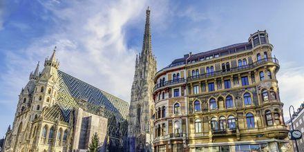 St. Stephen's katedral, Wiens katolske domkirke, er et vigtigt vartegn i byen.