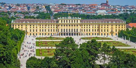 Schönbrunn slot er det smukkeste slot i Wien.