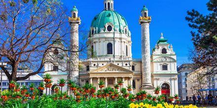Karlskirche er en statelig kirke i Wien fra Barokken.